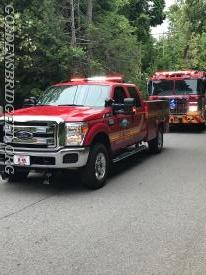 GBFD Rescue 25 & Engine 138 during the parade.